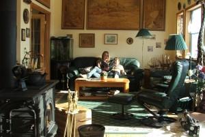 Sunshine through south windows  help heat our home